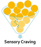 A large funnel with a hairline crack overflowing with yellow orbs and a downward arrow pointing at text Sensory Craving at the bottom.